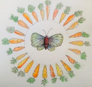 Eileen carrots